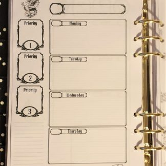 Dungeons and Dragons style planner diary